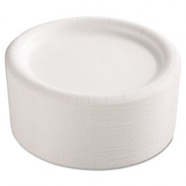 Premium Coated Paper Plates, 9 Inches, White, Round, 125/Pack
