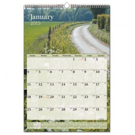 Recycled Scenic Monthly Wall Calendar, Jan-Dec, Wall, 12 x 17, 2013