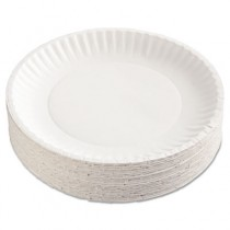 Uncoated Paper Plates, 9 Inches, White, Round, 100/Pack